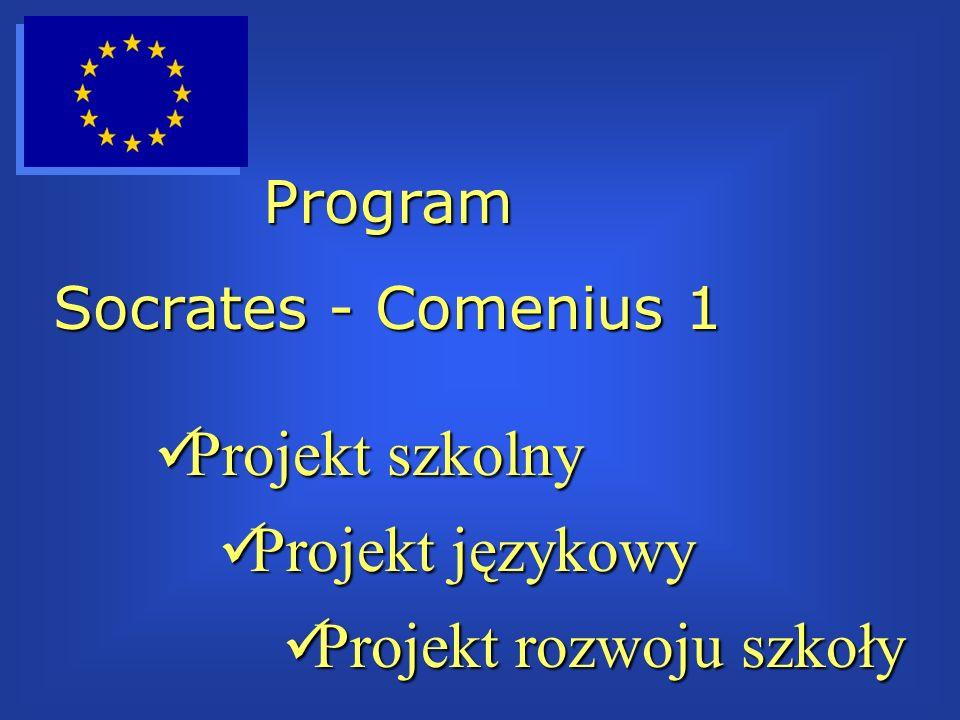 Projekt szkolny Projekt szkolny Projekt językowy Projekt językowy Projekt rozwoju szkoły Projekt rozwoju szkoły Program Socrates - Comenius 1