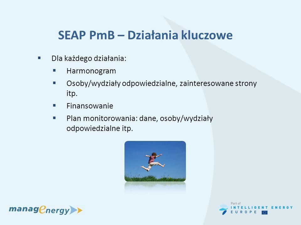 SEAP PmB – Działania kluczowe Dla każdego działania: Harmonogram Osoby/wydziały odpowiedzialne, zainteresowane strony itp. Finansowanie Plan monitorow