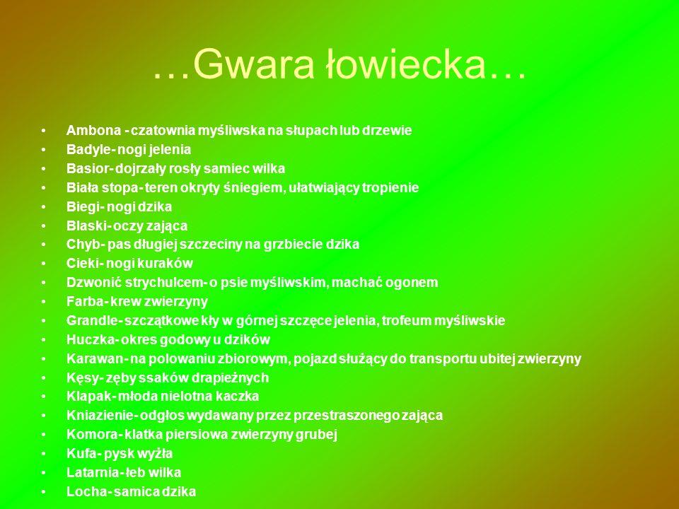 …Gwara łowiecka… Ambona - czatownia myśliwska na słupach lub drzewie Badyle- nogi jelenia Basior- dojrzały rosły samiec wilka Biała stopa- teren okryt
