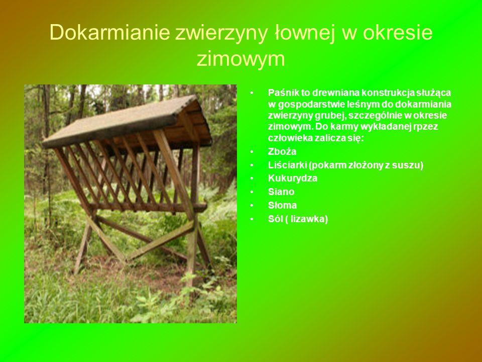 Dokarmianie zwierzyny łownej w okresie zimowym Paśnik to drewniana konstrukcja służąca w gospodarstwie leśnym do dokarmiania zwierzyny grubej, szczegó