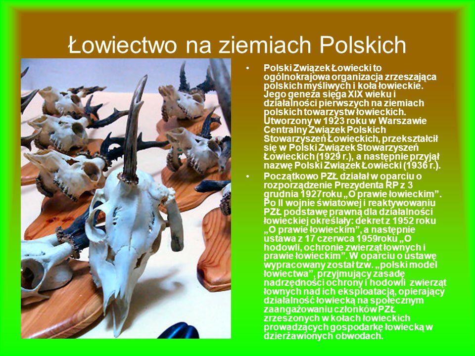 Łowiectwo na ziemiach Polskich Polski Związek Łowiecki to ogólnokrajowa organizacja zrzeszająca polskich myśliwych i koła łowieckie. Jego geneza sięga