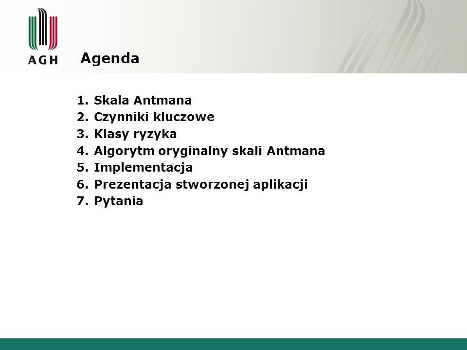 Agenda 1.Skala Antmana 2.Czynniki kluczowe 3.Klasy ryzyka 4.Algorytm oryginalny skali Antmana 5.Implementacja 6.Prezentacja stworzonej aplikacji 7.Pyt