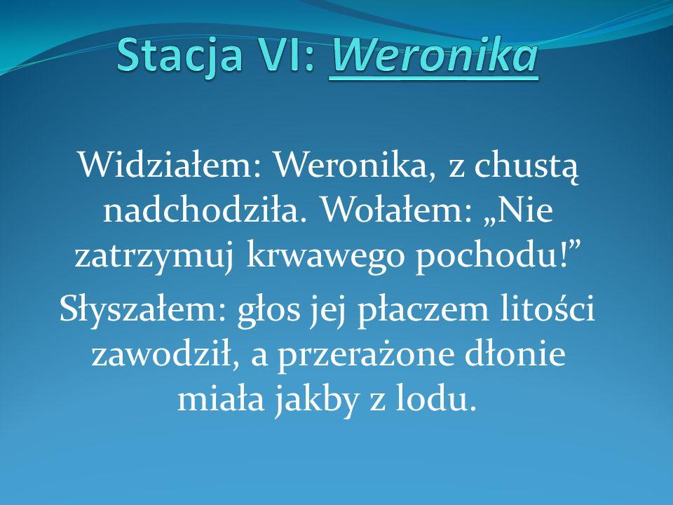 Widziałem: Weronika, z chustą nadchodziła. Wołałem: Nie zatrzymuj krwawego pochodu! Słyszałem: głos jej płaczem litości zawodził, a przerażone dłonie