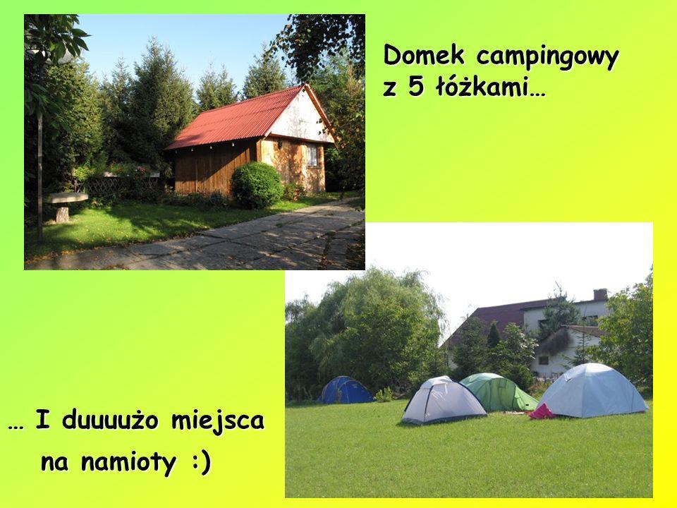 Domek campingowy z 5 łóżkami… … I duuuużo miejsca na namioty :) na namioty :)