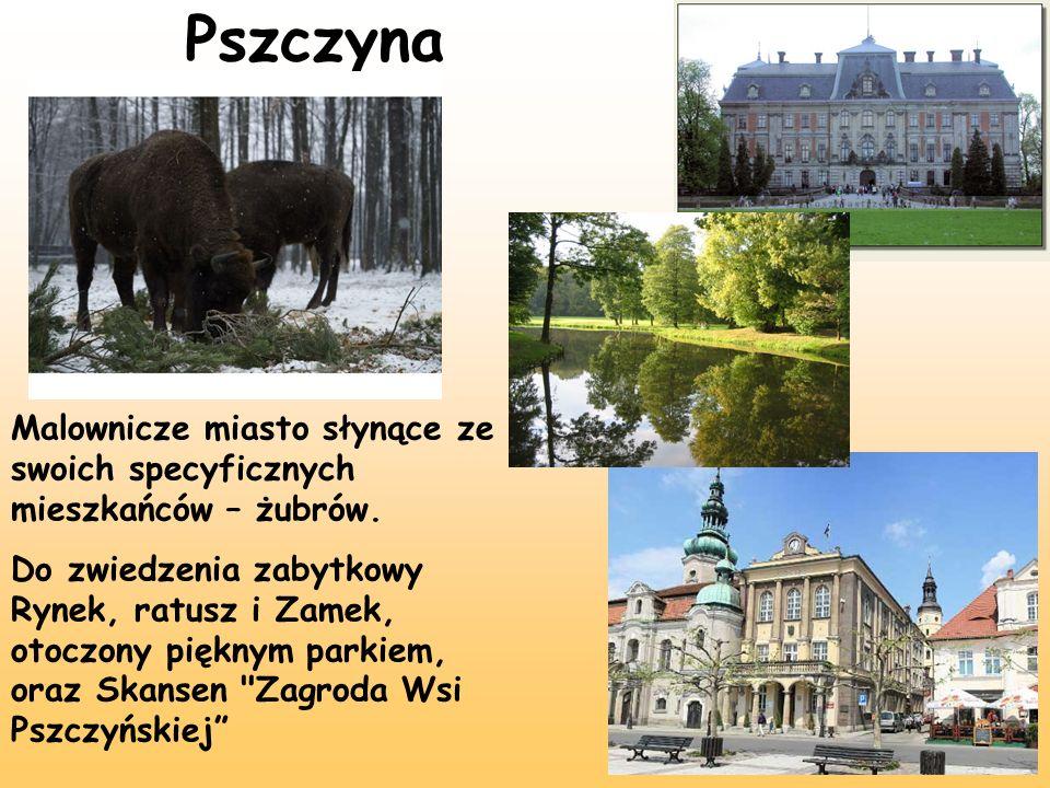 Pszczyna Malownicze miasto słynące ze swoich specyficznych mieszkańców – żubrów. Do zwiedzenia zabytkowy Rynek, ratusz i Zamek, otoczony pięknym parki