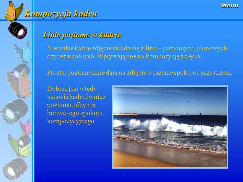 menu Kompozycja kadru Złoty podział kadru Podczas komponowania zdjęcia wygodnie jest podzielić go na dziewięć równych części za pomocą dwóch linii poz