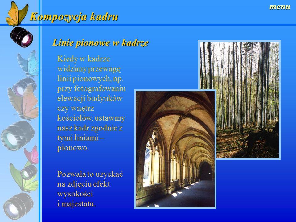 menu Kompozycja kadru Linie poziome w kadrze Niemalże każde zdjęcie składa się z linii – poziomych, pionowych, czy też ukośnych. Wpływają one na kompo