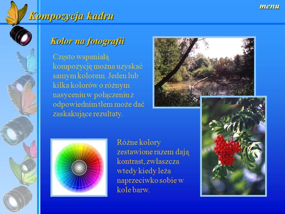 menu Kompozycja kadru Kontrast światła Kontrast oświetlenia i powstałe dzięki temu jasne i ciemne partie obrazu również mają duży wpływ na kompozycję