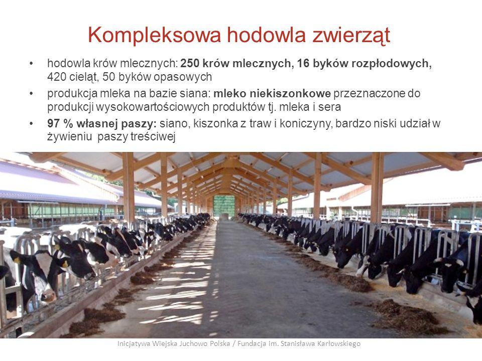 Kompleksowa hodowla zwierząt hodowla krów mlecznych: 250 krów mlecznych, 16 byków rozpłodowych, 420 cieląt, 50 byków opasowych produkcja mleka na bazi