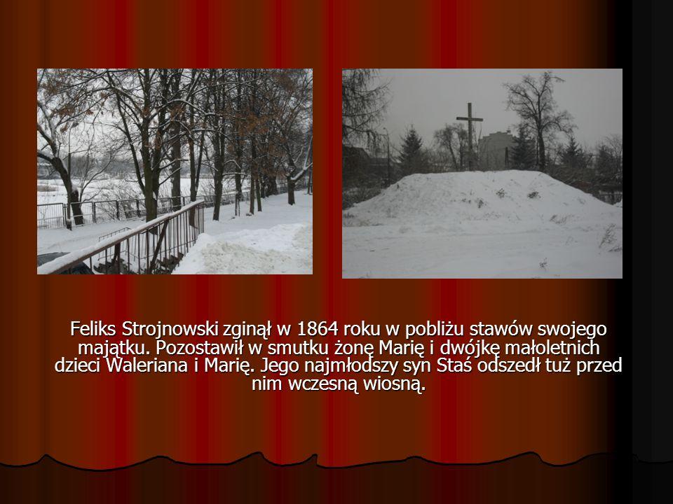 Feliks Strojnowski zginął w 1864 roku w pobliżu stawów swojego majątku. Pozostawił w smutku żonę Marię i dwójkę małoletnich dzieci Waleriana i Marię.