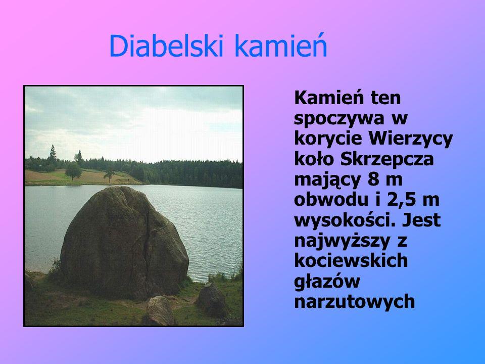 Diabelski kamień Kamień ten spoczywa w korycie Wierzycy koło Skrzepcza mający 8 m obwodu i 2,5 m wysokości. Jest najwyższy z kociewskich głazów narzut