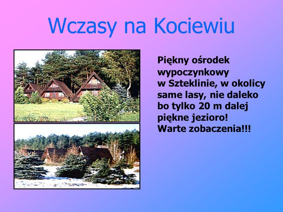 Wczasy na Kociewiu Piękny ośrodek wypoczynkowy w Szteklinie, w okolicy same lasy, nie daleko bo tylko 20 m dalej piękne jezioro! Warte zobaczenia!!!