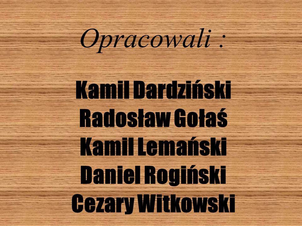 Opracowali : Kamil Dardziński Radosław Gołaś Kamil Lemański Daniel Rogiński Cezary Witkowski