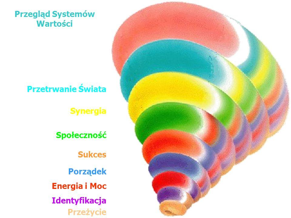 Energia i Moc Synergia Identyfikacja Porządek Przetrwanie Świata Społeczność Sukces Przeżycie Przegląd Systemów Wartości The National Values Center, I