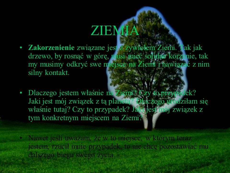 ZIEMIA Zakorzenienie związane jest z żywiołem Ziemi. Tak jak drzewo, by rosnąć w górę, musi mieć solidne korzenie, tak my musimy odkryć swe miejsce na