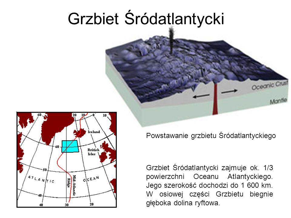 Grzbiet Śródatlantycki Powstawanie grzbietu Śródatlantyckiego Grzbiet Śródatlantycki zajmuje ok. 1/3 powierzchni Oceanu Atlantyckiego. Jego szerokość