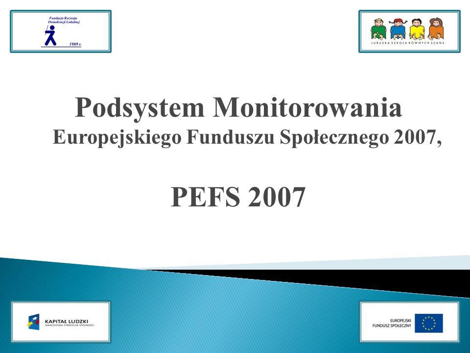 Podsystem Monitorowania Europejskiego Funduszu Społecznego 2007, PEFS 2007