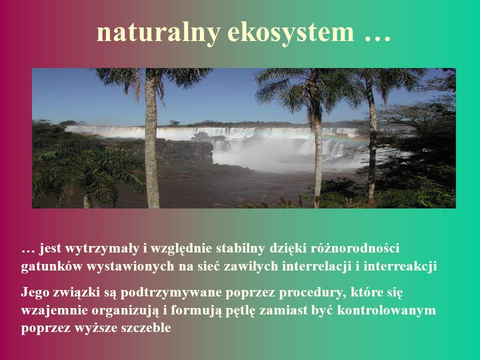 … Być może już nadszedł czas aby rzucić okiem na funkcjonowanie systemów naturalnych…