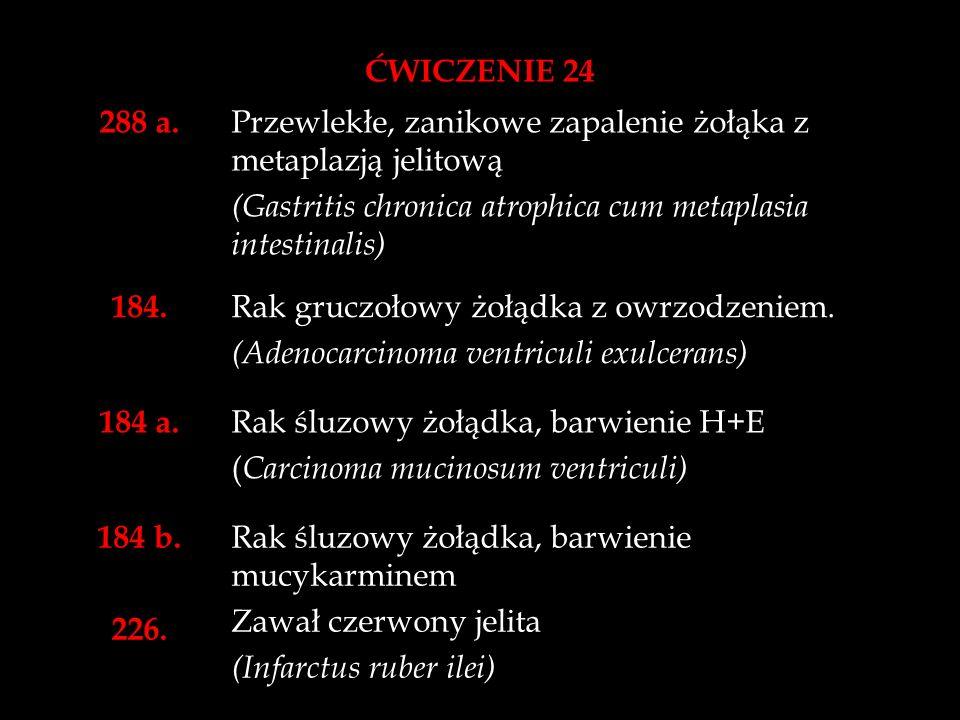 ĆWICZENIE 24 241.Owsica wyrostka robaczkowego. (Oxyuriasis processus vermiformis) 324.