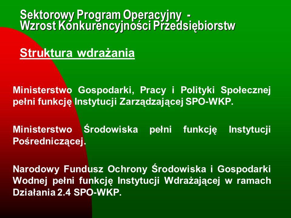 Sektorowy Program Operacyjny - Wzrost Konkurencyjności Przedsiębiorstw Struktura wdrażania Ministerstwo Gospodarki, Pracy i Polityki Społecznej pełni