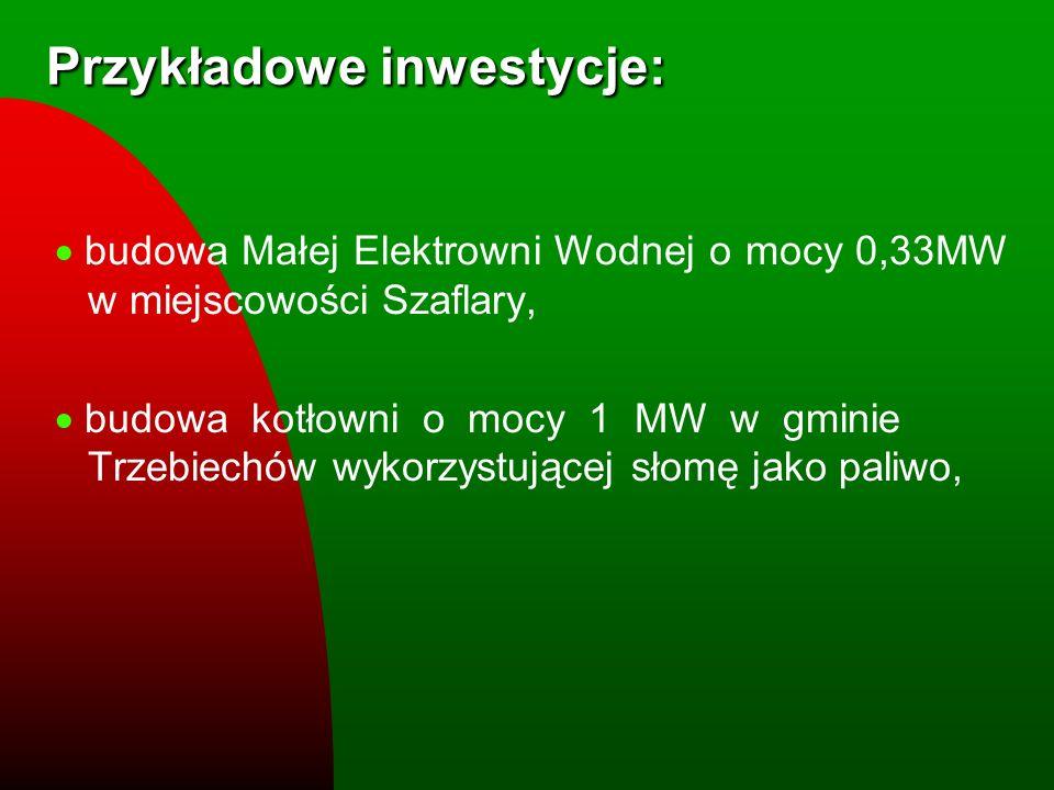 Przykładowe inwestycje: budowa Małej Elektrowni Wodnej o mocy 0,33MW w miejscowości Szaflary, budowa kotłowni o mocy 1 MW w gminie Trzebiechów wykorzy