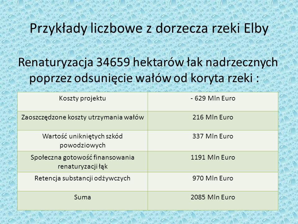 Przykłady liczbowe z dorzecza rzeki Elby Renaturyzacja 34659 hektarów łak nadrzecznych poprzez odsunięcie wałów od koryta rzeki : Koszty projektu- 629