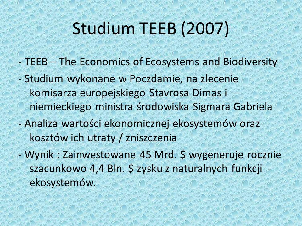 Studium TEEB (2007) - TEEB – The Economics of Ecosystems and Biodiversity - Studium wykonane w Poczdamie, na zlecenie komisarza europejskiego Stavrosa