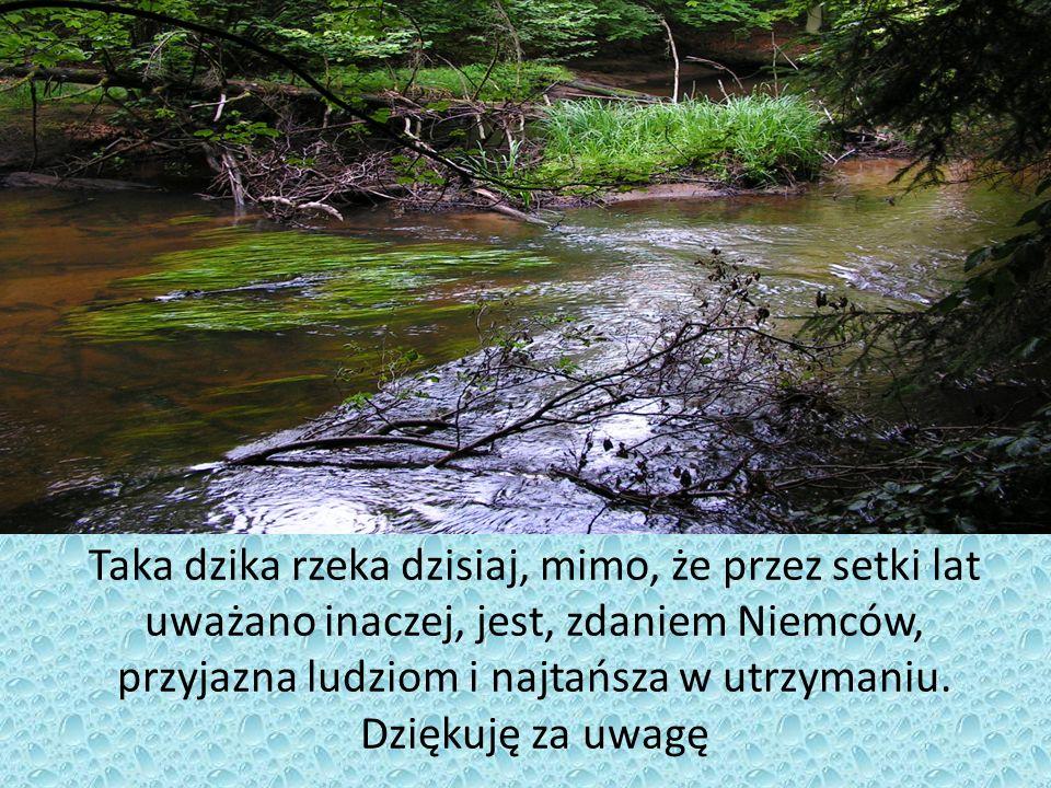Taka dzika rzeka dzisiaj, mimo, że przez setki lat uważano inaczej, jest, zdaniem Niemców, przyjazna ludziom i najtańsza w utrzymaniu. Dziękuję za uwa