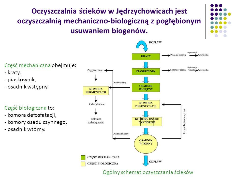 Zasada biologicznego usuwania azotu Przemiany form azotu w ściekach poddanych biologicznemu usuwaniu azotu: Dopływ ścieków zawierających azot w formie organicznej i amonowej.
