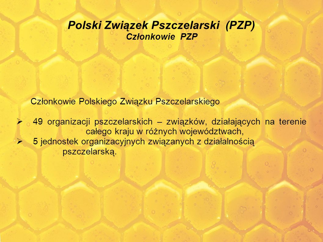 Polski Związek Pszczelarski (PZP) Członkowie PZP Członkowie Polskiego Związku Pszczelarskiego 49 organizacji pszczelarskich – związków, działających n
