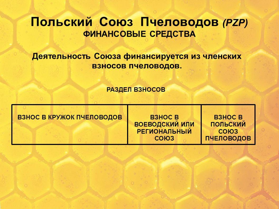 Польский Союз Пчеловодов (PZP) ФИНАНСОВЫЕ СРЕДСТВА Деятельность Союза финансируется из членских взносов пчеловодов. РАЗДЕЛ ВЗНОСОВ ВЗНОС В КРУЖОК ПЧЕЛ