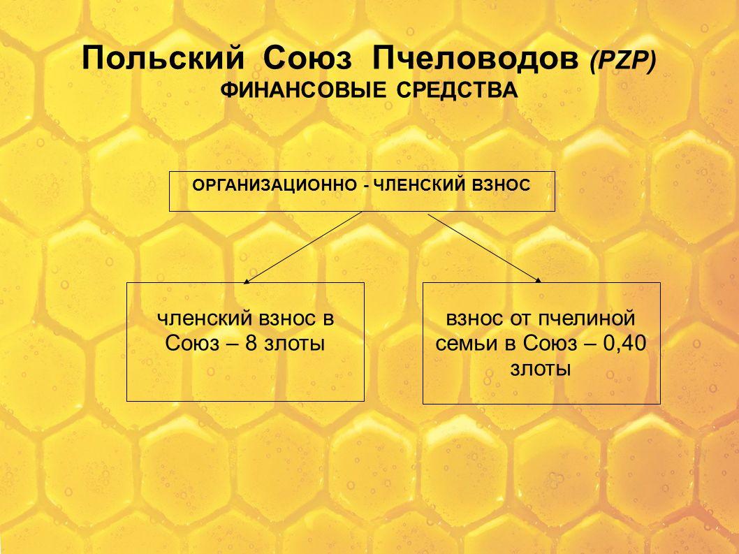 Польский Союз Пчеловодов (PZP) ФИНАНСОВЫЕ СРЕДСТВА ОРГАНИЗАЦИОННО - ЧЛЕНСКИЙ ВЗНОС членский взнос в Союз – 8 злоты взнос от пчелиной семьи в Союз – 0,