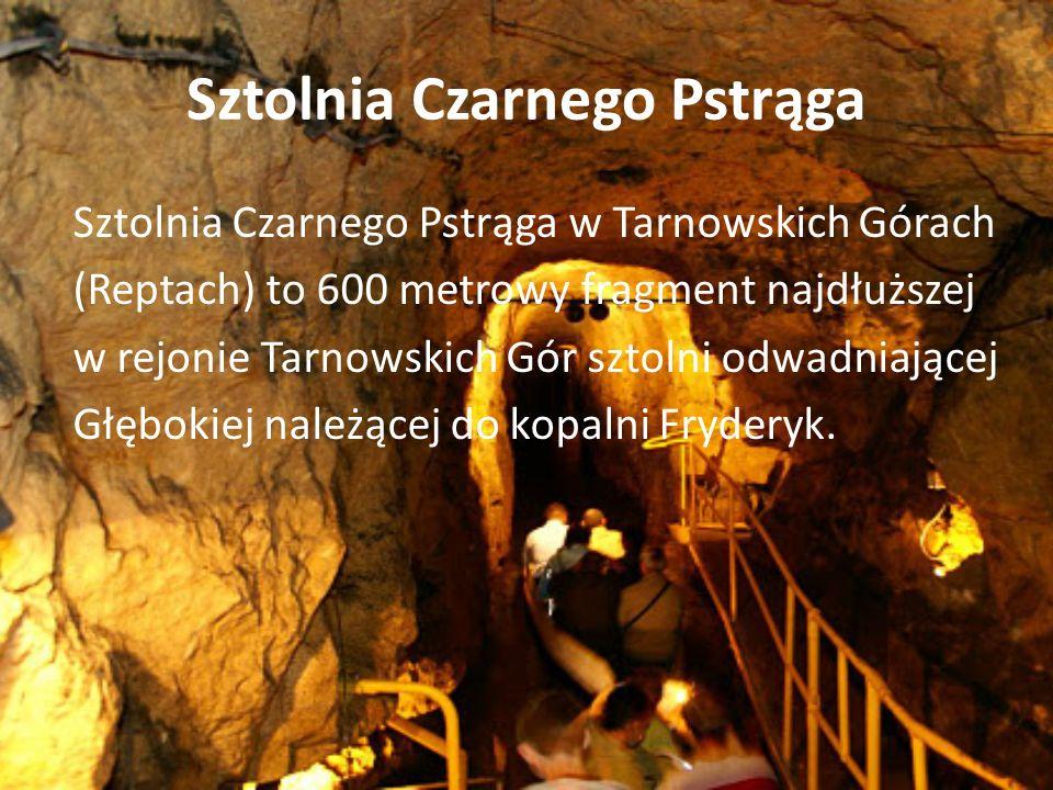 Sztolnia Czarnego Pstrąga Sztolnia Czarnego Pstrąga w Tarnowskich Górach (Reptach) to 600 metrowy fragment najdłuższej w rejonie Tarnowskich Gór sztolni odwadniającej Głębokiej należącej do kopalni Fryderyk.