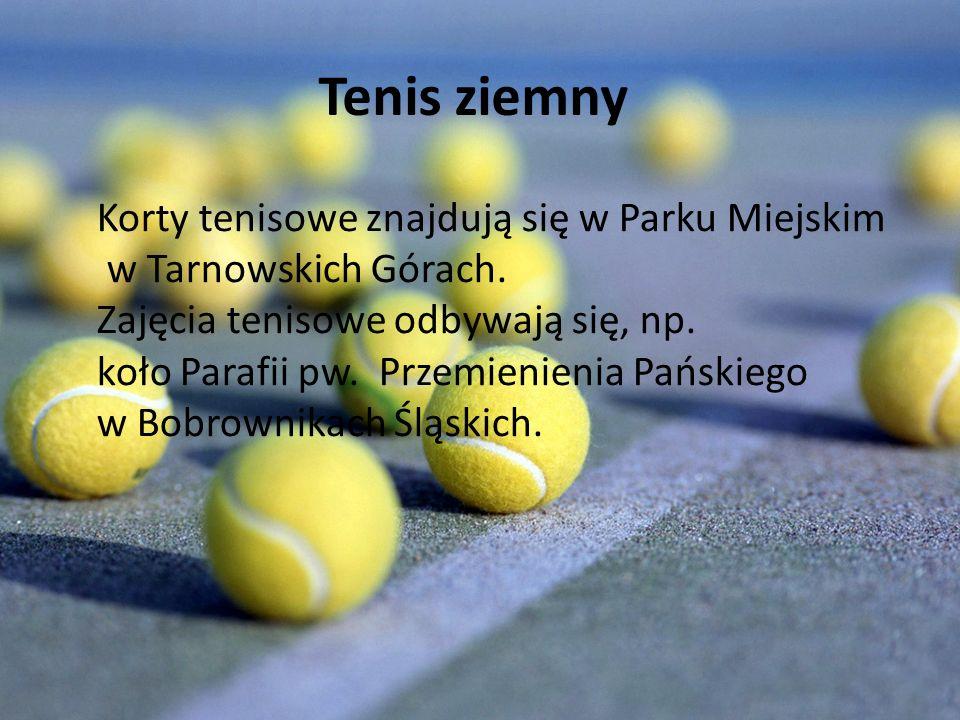 Tenis ziemny Korty tenisowe znajdują się w Parku Miejskim w Tarnowskich Górach.