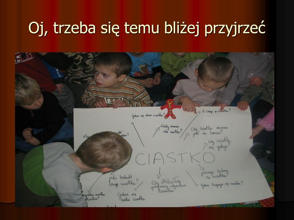 I faza projektu- 24. 11. 2008: temat i pytania obrane przez dzieci