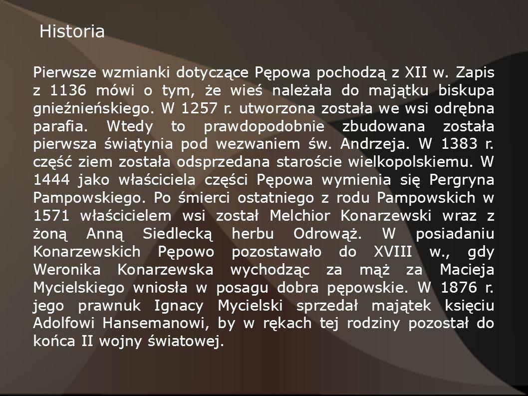Historia Pierwsze wzmianki dotyczące Pępowa pochodzą z XII w. Zapis z 1136 mówi o tym, że wieś należała do majątku biskupa gnieźnieńskiego. W 1257 r.