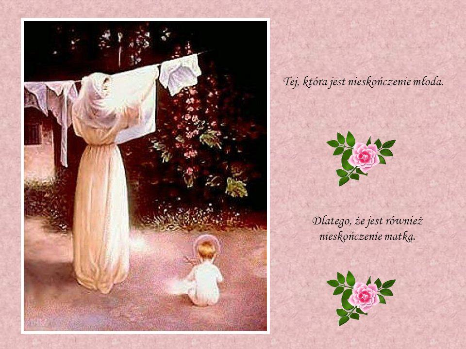 Hołd Maryi
