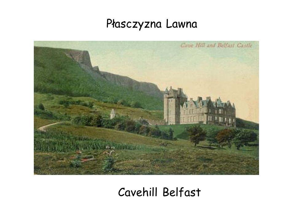 Cavehill Belfast Płasczyzna Lawna