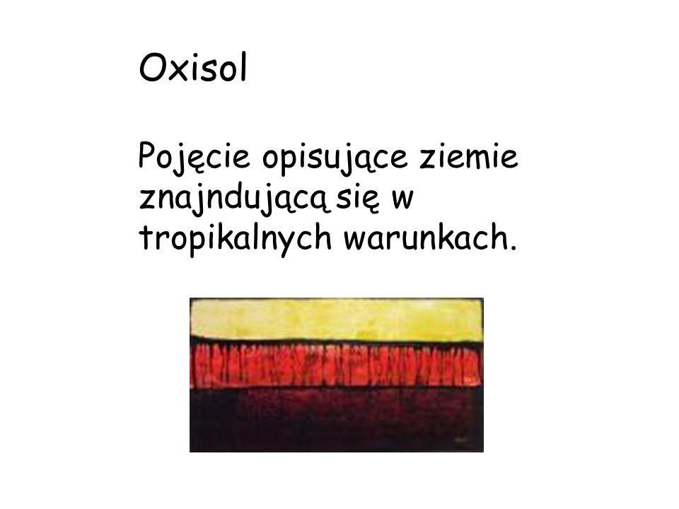 Oxisol Pojęcie opisujące ziemie znajndującą się w tropikalnych warunkach.
