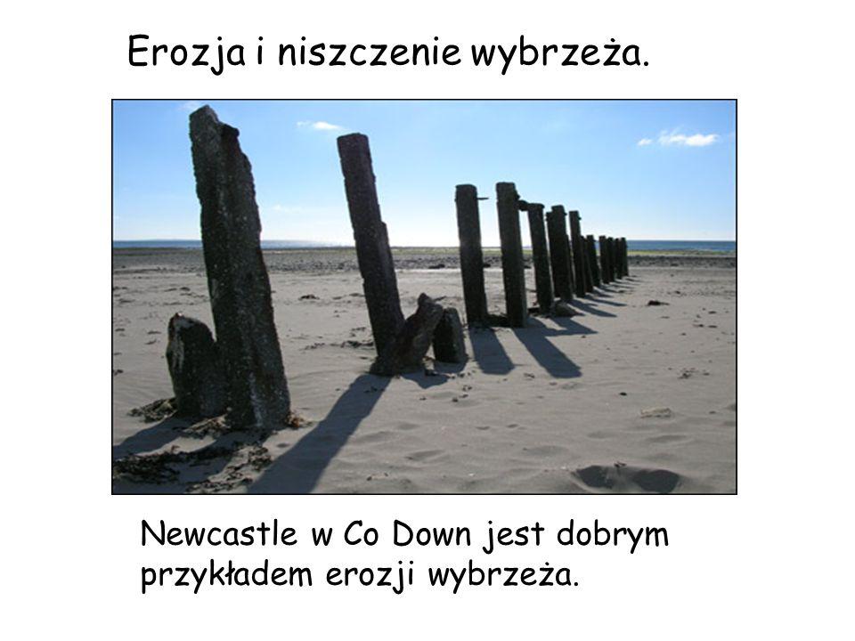 Newcastle w Co Down jest dobrym przykładem erozji wybrzeża. Erozja i niszczenie wybrzeża.