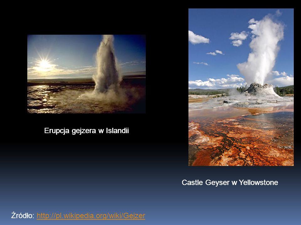 Źródło: http://pl.wikipedia.org/wiki/Gejzerhttp://pl.wikipedia.org/wiki/Gejzer Castle Geyser w Yellowstone Erupcja gejzera w Islandii Castle Geyser w