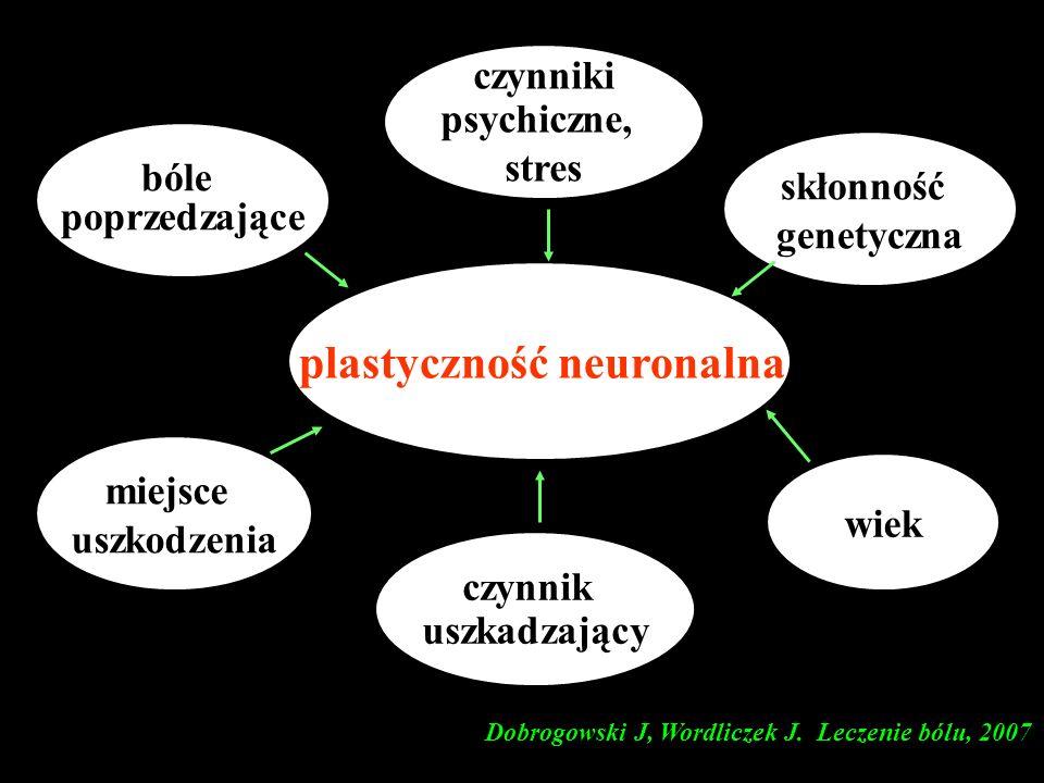 plastyczność neuronalna czynnik uszkadzający bóle poprzedzające czynniki psychiczne, stres miejsce uszkodzenia skłonność genetyczna wiek Dobrogowski J