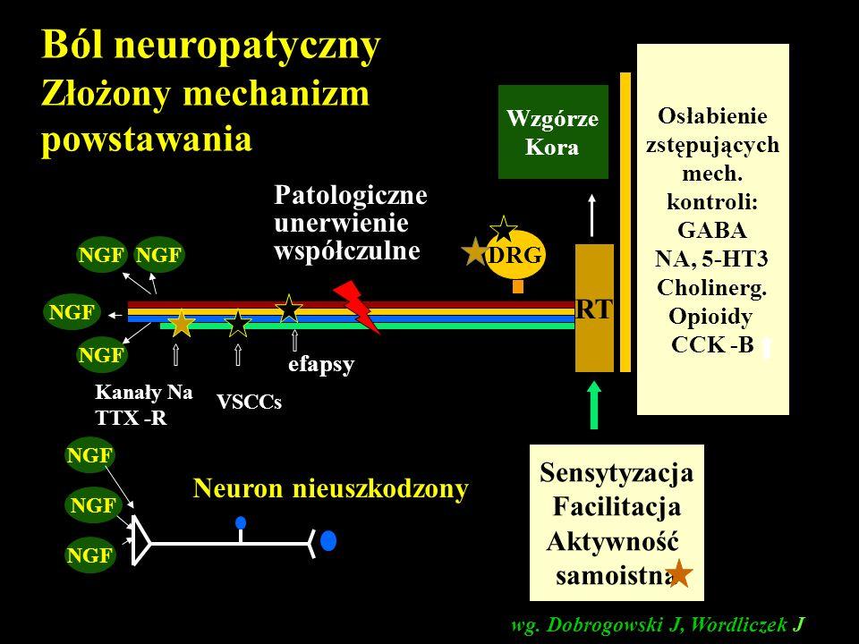 Złożony mechanizm powstawania DRG RT Kanały Na TTX -R Kanały Ca VSCCs efapsy Sensytyzacja Facilitacja Aktywność samoistna Osłabienie zstępujących mech