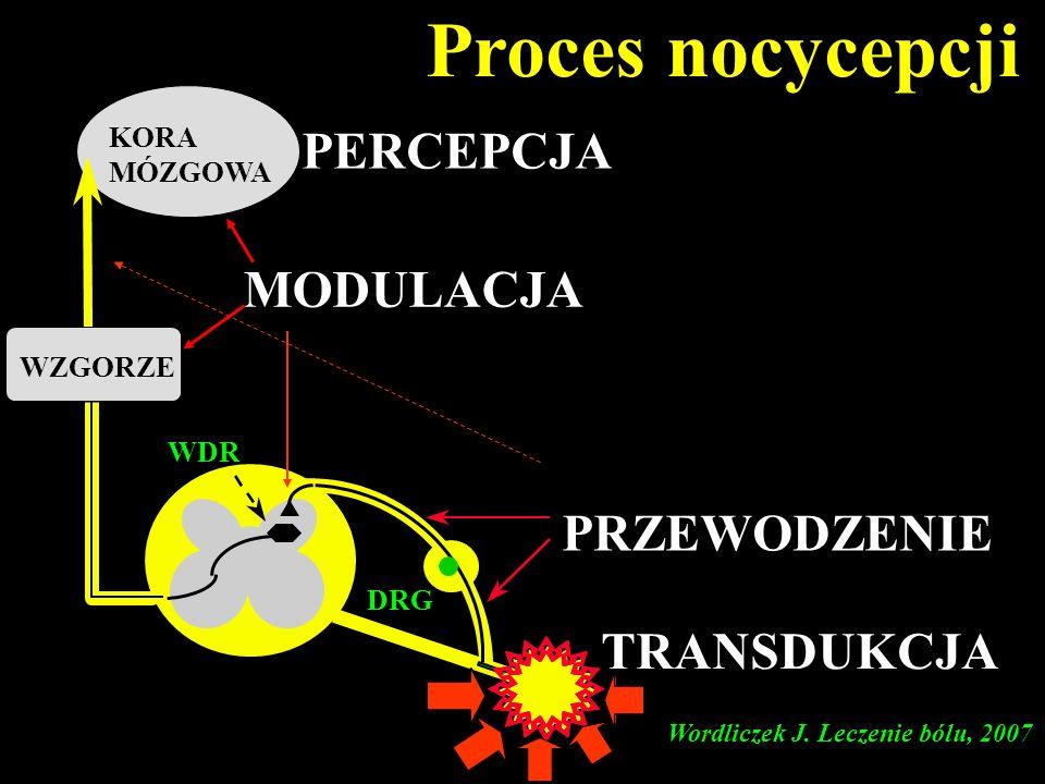 DRG KORA MÓZGOWA Proces nocycepcji WDR WZGORZE TRANSDUKCJA PRZEWODZENIE PERCEPCJA MODULACJA Wordliczek J. Leczenie bólu, 2007