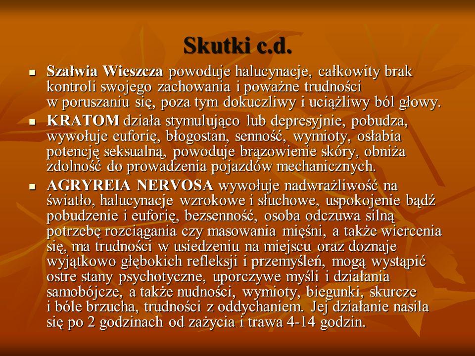 Skutki c.d. Szałwia Wieszcza powoduje halucynacje, całkowity brak kontroli swojego zachowania i poważne trudności w poruszaniu się, poza tym dokuczliw