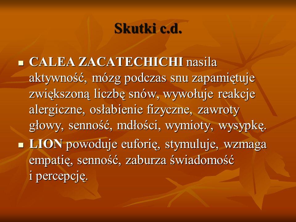 Skutki c.d. CALEA ZACATECHICHI nasila aktywność, mózg podczas snu zapamiętuje zwiększoną liczbę snów, wywołuje reakcje alergiczne, osłabienie fizyczne