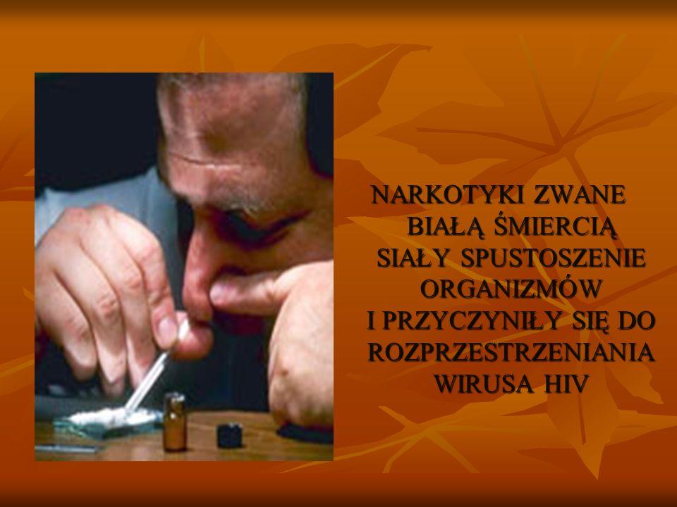 NARKOTYKI ZWANE BIAŁĄ ŚMIERCIĄ SIAŁY SPUSTOSZENIE ORGANIZMÓW I PRZYCZYNIŁY SIĘ DO ROZPRZESTRZENIANIA WIRUSA HIV