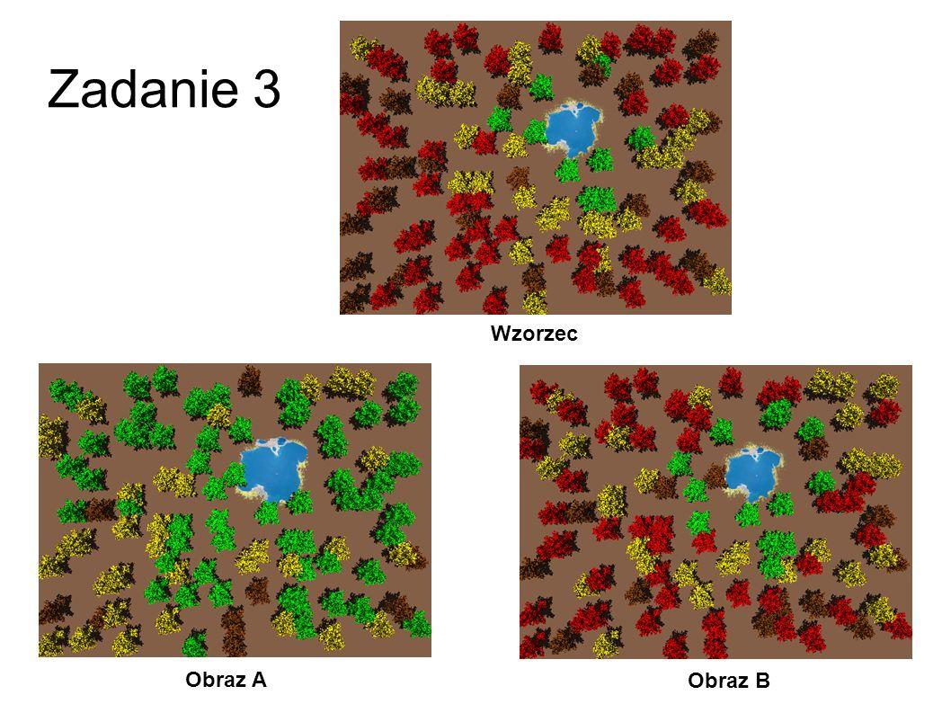 Zadanie 2 Obraz A Obraz B Wzorzec