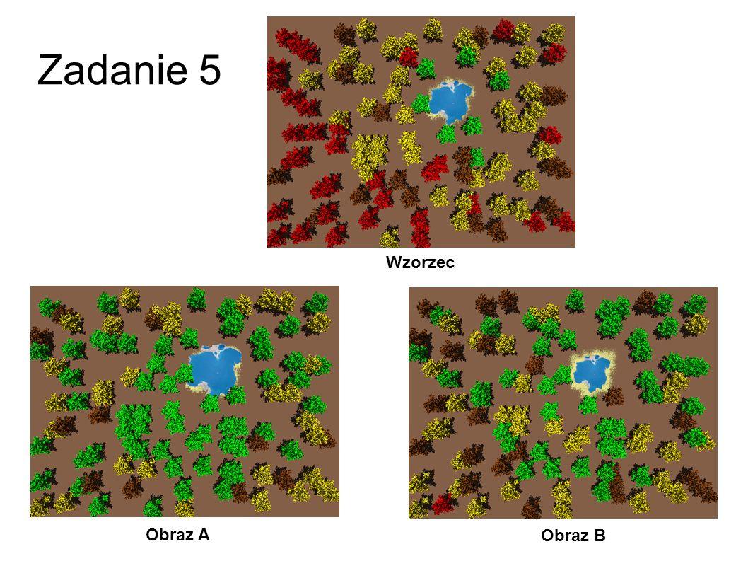 Zadanie 4 Obraz A Obraz B Wzorzec