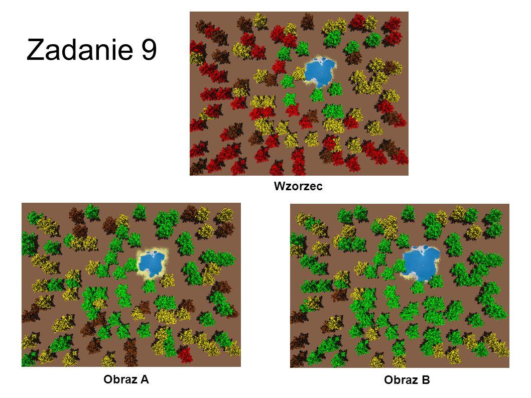 Zadanie 8 Obraz A Obraz B Wzorzec